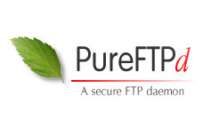 Настройка протокола TLS для Pure-ftp