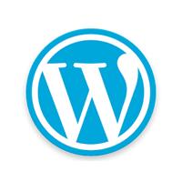 Защита админки WordPress от подбора пароля.