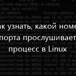 Как узнать, какой номер порта прослушивает процесс в Ubuntu.